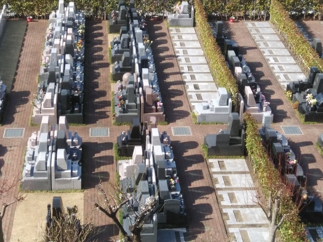 墓地の現地確認