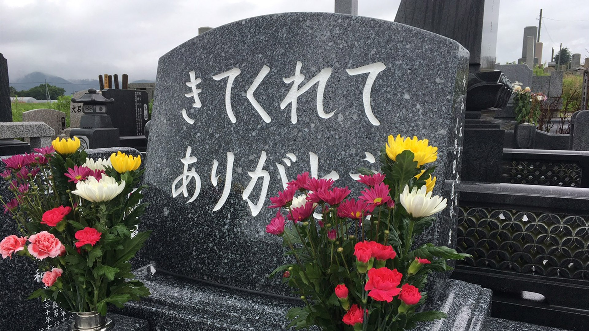 感謝のお墓の施工事例